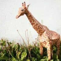 Жираф методом папье-маше